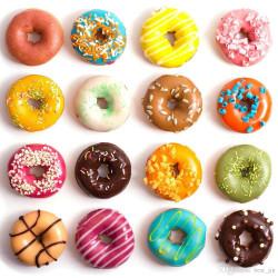 ladychef Monoporzioni classiche Stampo Donut