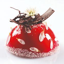 ladychef Torte Stampo zuccotto