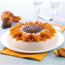 ladychef Torte Stampo Girasole